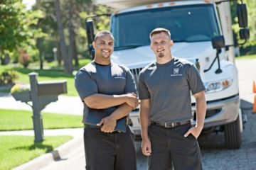Team & Expedited Service